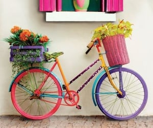 bicycle, flower, and lovely things image