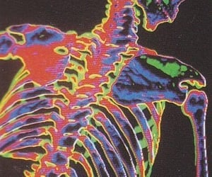 aesthetic, skeleton, and wallpaper image