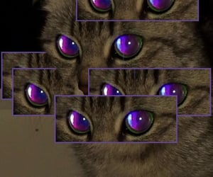 cyber image