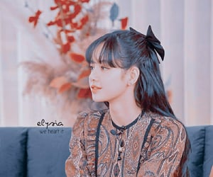 lisa, kpop theme, and kpop amino theme image