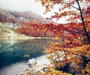 autumn, landscape, and river image