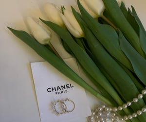 accessories, earrings, and flower image