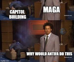 capitol, donald trump, and us capitol image