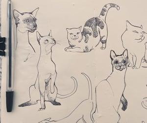 dibujos and Gatos image