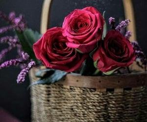 ღ Life in Bloom ღ