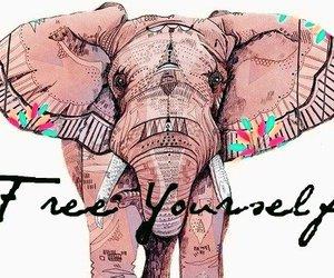 elephant, free, and yourself image