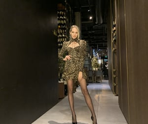 chic, dress, and luxury fashion image