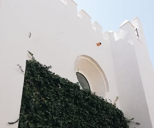 architecture, seville, and vines image