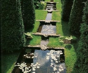 garden and beautiful image