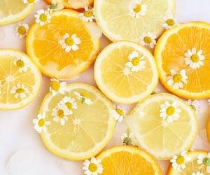 aesthetic, lemon, and yellow image