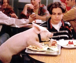 boy meets world, piggy, and vibes image