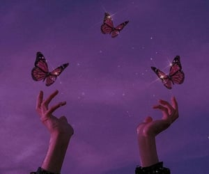 purple, aesthetic, and butterfly image
