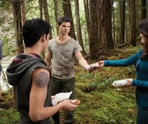 elizabeth reaser, Taylor Lautner, and booboo stewart image