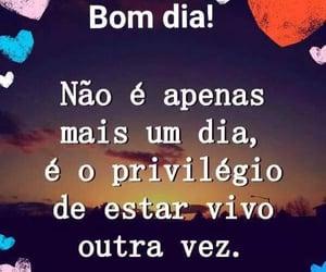 vida, frases em português, and frases image