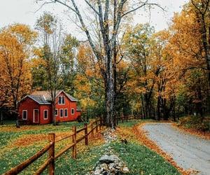 autumn, autumnal, and cottage image