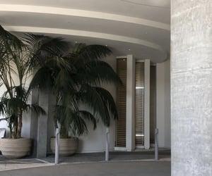 decor, palm trees, and theme image