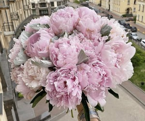 beauty, bouquet, and city image