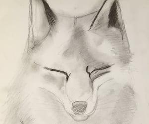 animal, drawing, and fox image