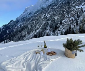 Alps, books, and chillin image