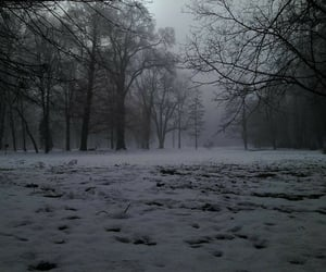 snow, winter, and aesthetic image