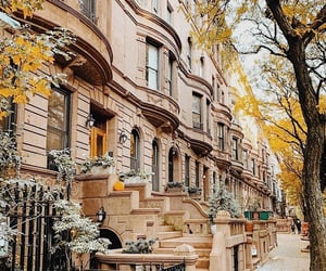 apartment, autumn, and Brooklyn image