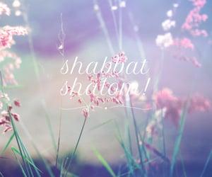 flowers and shabbat shalom image