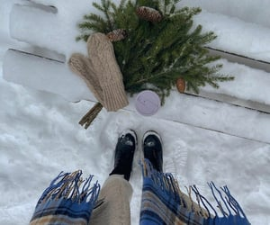 december, gloves, and pinecone image