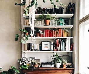 beautiful bookshelves in a small office with plants