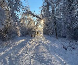 Nordic winter.