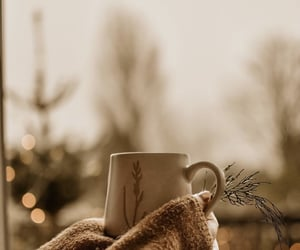 twinkle lights, coffeelover, and cold days image