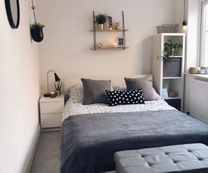 clean, grey, and plants image