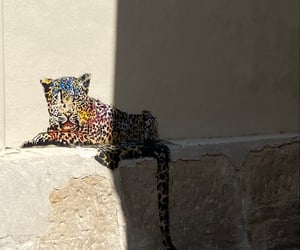 beauty, leopard, and streetart image