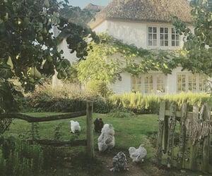 cottagecore, nature, and soft image