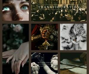 albus dumbledore, minerva mcgonagall, and admm image