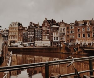 amsterdam, autunm, and brown image