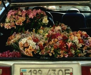 Flowers on move  @eve365