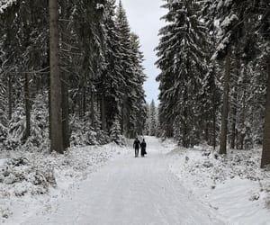 landscapes, nature, and season image