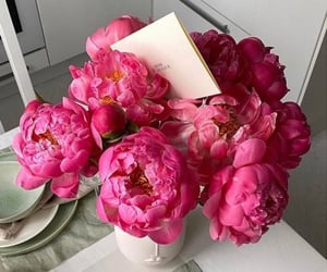 Fleurs, pink, and flowers image