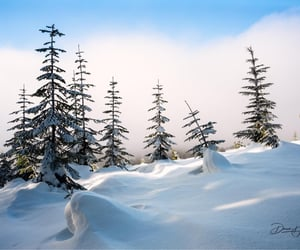 Winter colors, Mount Washington