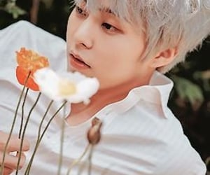 boyfriend, flowers, and kpop image