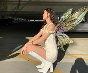 aesthetic, evening, and fairy image