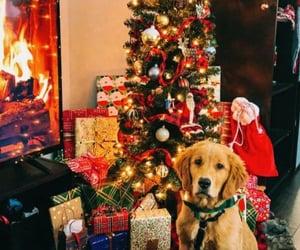 christmas, 🎄, and 🌲 image