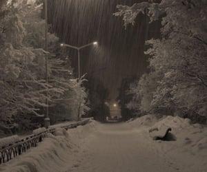 Winter ❄️ ❄️@_Naina