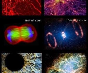 life, universe, and universo image