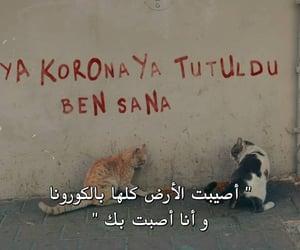 حب عشق غرام غزل, جدار جدران جداريات, and نصيحة نصائح عبارة عبارات image