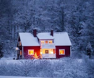 cold, frosty, and home image