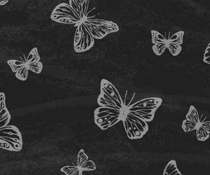 lockscreen, butterflies, and wallpaper image