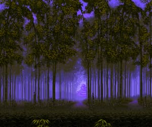 videogame, raindow, and forest image