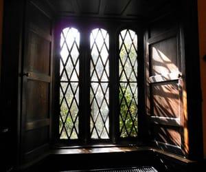 home, dark academia, and interior image