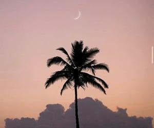 beautiful, photography, and sunrise image